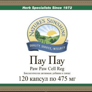 Пaу Пау НСП, Paw Paw Cell Reg NSP [511]