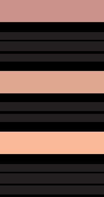 Компактные румяна Compact Blusher BREMANI