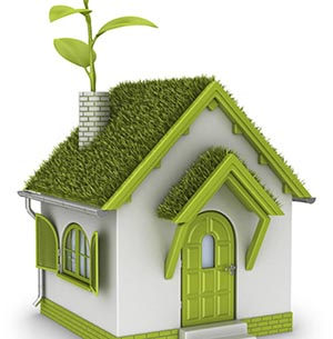 Экология жилища