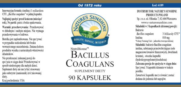 Bacillus Coagulans NSP